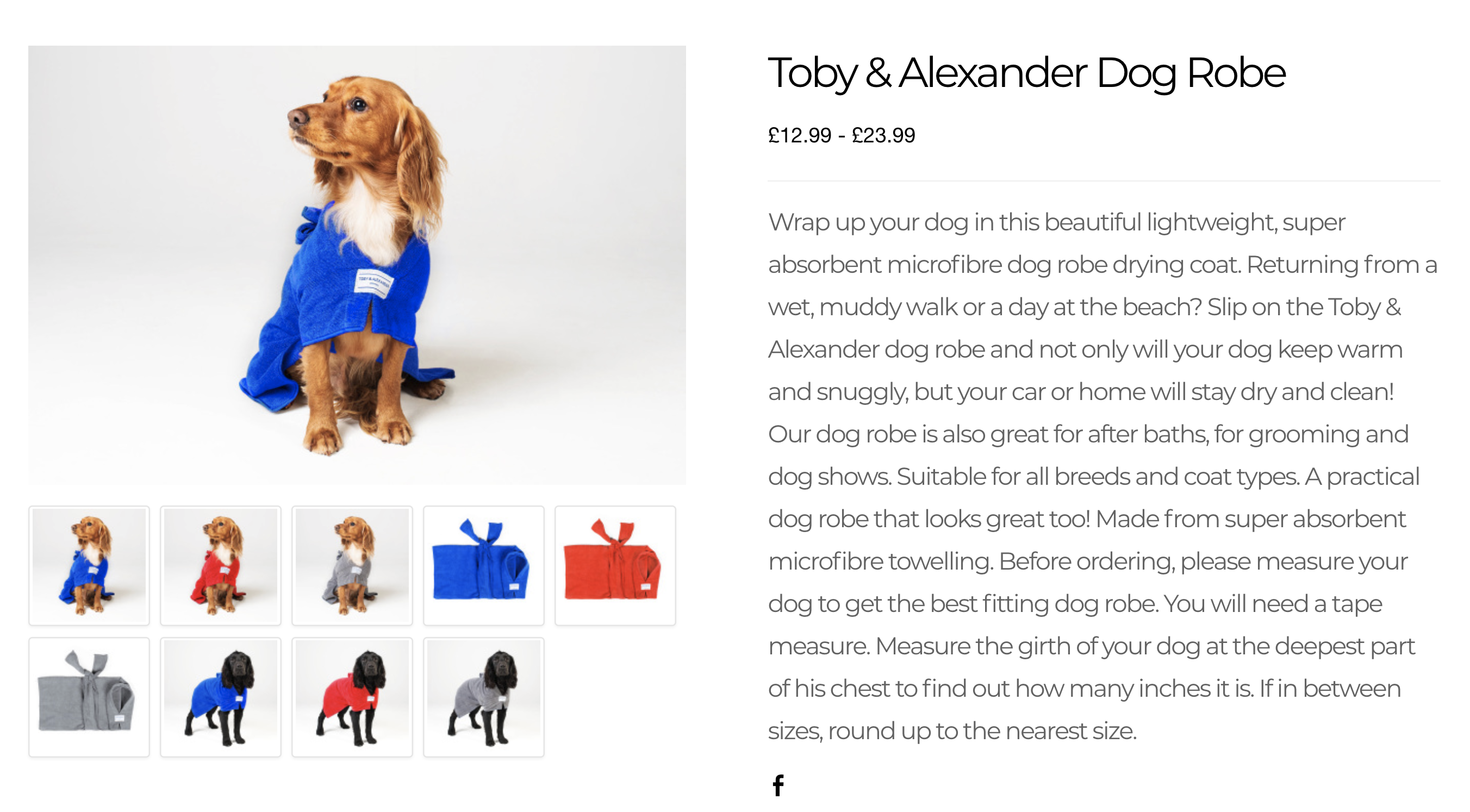 Toby and Alexander Studio Shoot | Paws & Tors