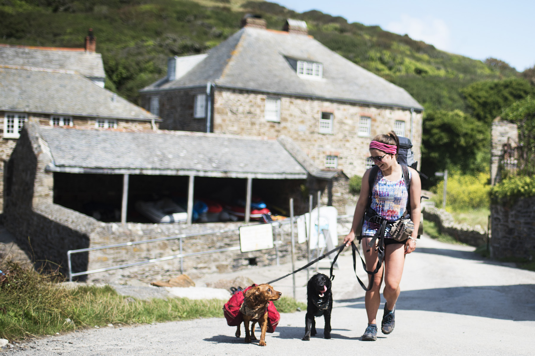 Welcome to Paws & Tors | Paws & Tors