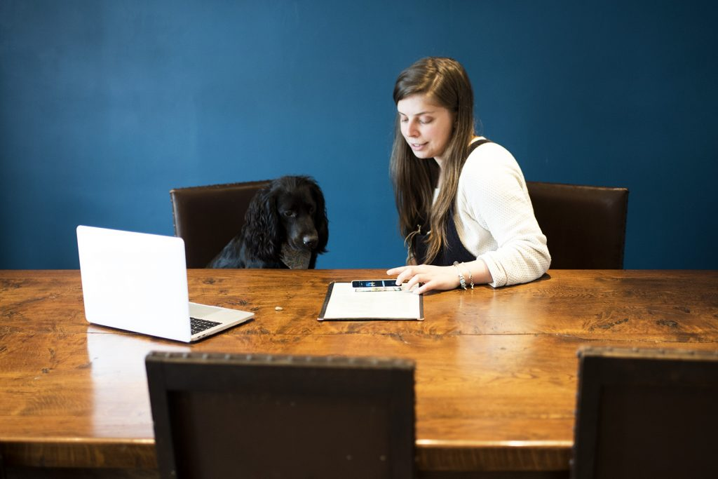 Books for Dog Businesses