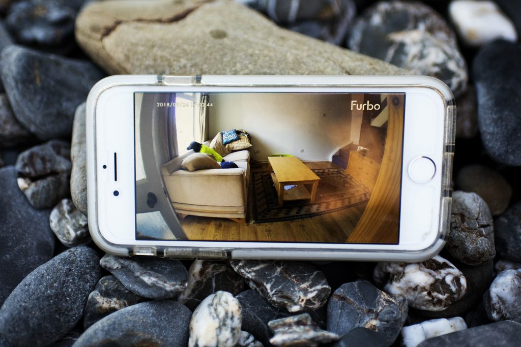 Soothing Our Separation Anxiety with Furbo Dog Camera   AD